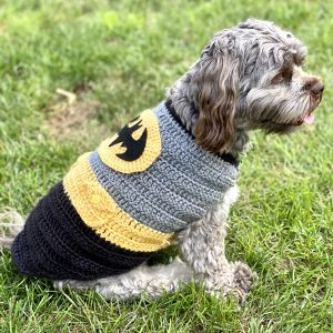 7 Irresistible DIY Halloween Costumes for Small Dogs