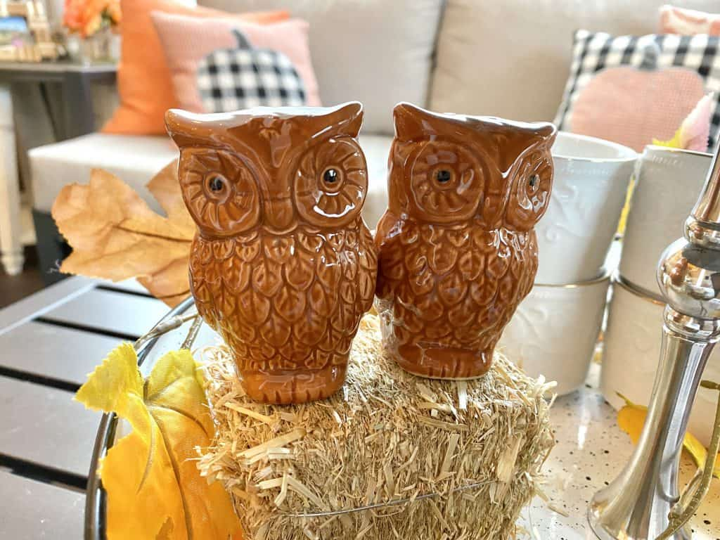 Owl salt and peper shakers.