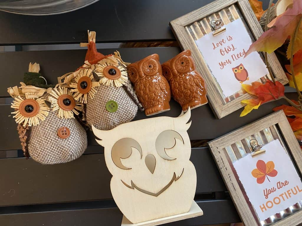 Fall decor items from dollar store.