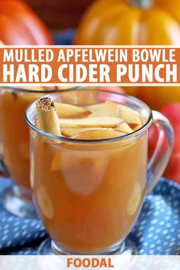 Hard Cider Punch