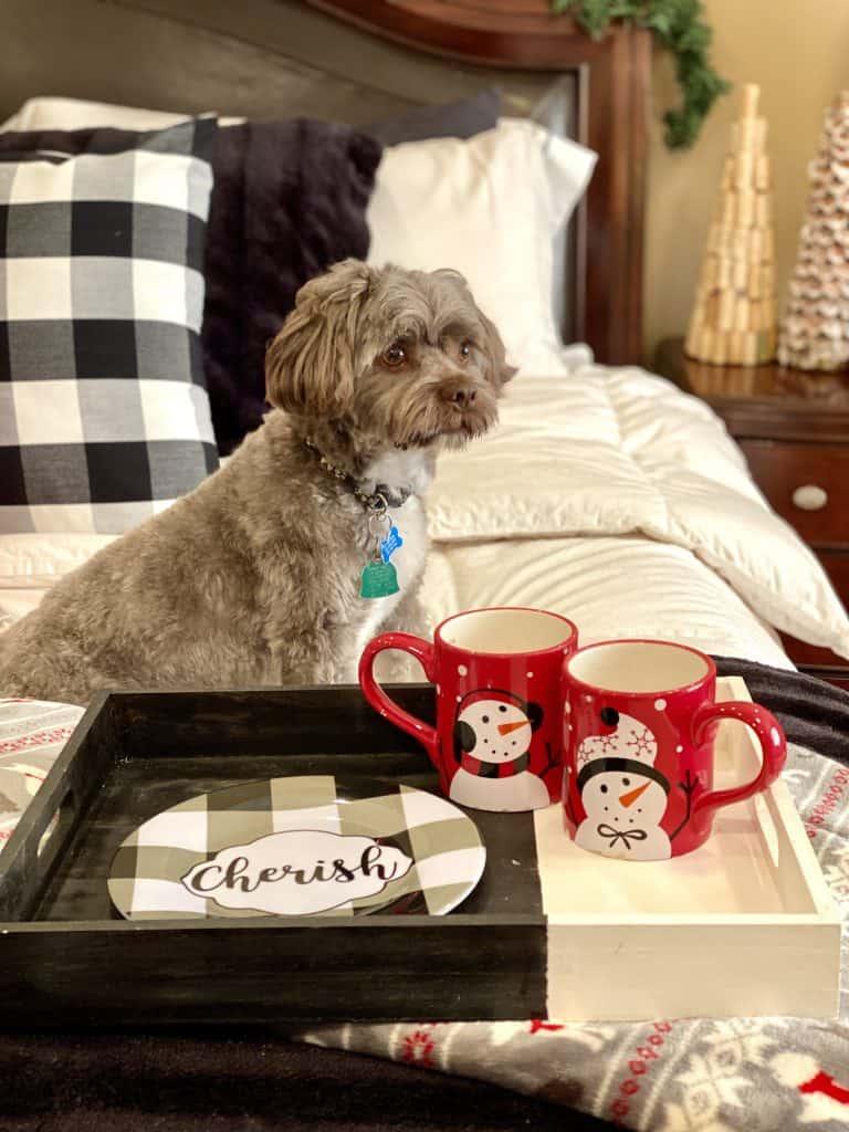 Puppy enjoying Christmas decor.